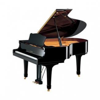 C3-PE- Đàn piano lớn ...